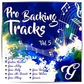 Pro Backing Tracks G, Vol.5 - Karaoke Version Originally Performed By Various Artists by Pop Music Workshop