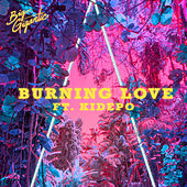 Burning Love de Big Gigantic