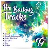 Pro Backing Tracks G, Vol.1 de Pop Music Workshop
