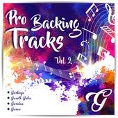 Pro Backing Tracks G, Vol.2 - Karaoke Version Originally Performed By Various Artists by Pop Music Workshop
