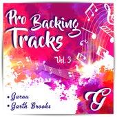 Pro Backing Tracks G, Vol.3 - Karaoke Version Originally Performed By Various Artists by Pop Music Workshop
