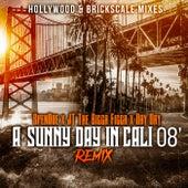 Wonderful Feelin (A Sunny Day In Cali 08) (Remix) von Spendoe