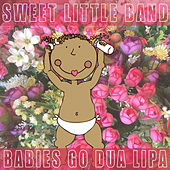 Babies Go Dua Lipa by Sweet Little Band