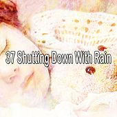37 Shutting Down with Rain by Rain Sounds and White Noise