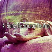 41 Sounds the Encourage the Mind von Massage Therapy Music