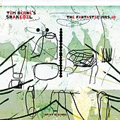 The Fantastic Mrs. 10 by Tim Berne's Snakeoil