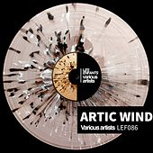 Artic Wind de Various Artists