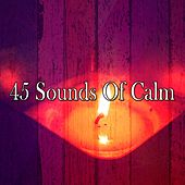 45 Sounds of Calm by Yoga Workout Music (1)