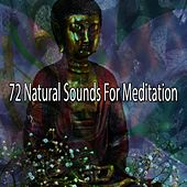 72 Natural Sounds for Meditation von Relaxing Mindfulness Meditation Relaxation Maestro