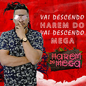 Vai Descendo by Harem do Mega