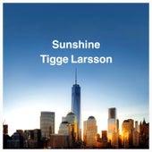 Sunshine (Radio Edit) by Tigge Larsson
