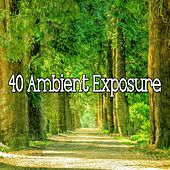 40 Ambient Exposure de Lullabies for Deep Meditation