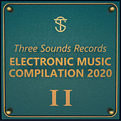 Tsr Electronic Music Compilation 2020 II de Various Artists