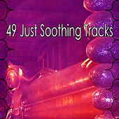 49 Just Soothing Tracks von Lullabies for Deep Meditation