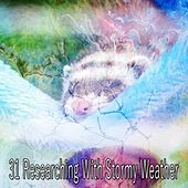 31 Researching with Stormy Weather by Rain Sounds and White Noise