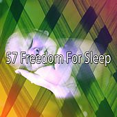 57 Freedom for Sleep by Ocean Sounds Collection (1)