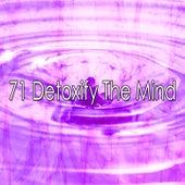 71 Detoxify the Mind de Meditation Zen Master