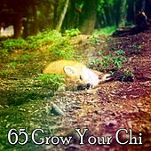 65 Grow Your Chi von S.P.A