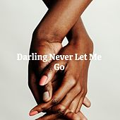 Darling Never Let Me Go de Lee Dorsey, Timi Yuro, Phil Phillips, Ruth Brown, Chuck Jackson, Betty Carter, Little Eva, Howlin' Wolf, The Du Droppers, Betty Harris, Sam
