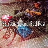 53 Your Natural Bed Rest de Calming Sounds