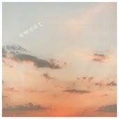 Sweet. van Suede Aves.