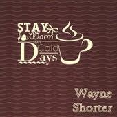 Stay Warm On Cold Days von Wayne Shorter