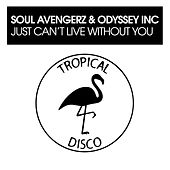 Just Can't Live Without You von Soul Avengerz