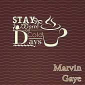 Stay Warm On Cold Days van Marvin Gaye