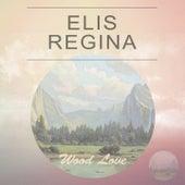Elis Regina: