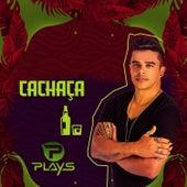 Cachaça von Forró dos Plays