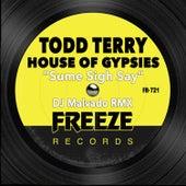 Sume Sigh Say (DJ Malvado RMX) de Todd Terry