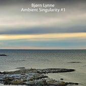 Ambient Singularity #1 de Bjørn Lynne
