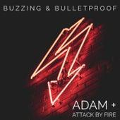 Buzzing & Bulletproof de adam