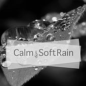 Calm & Soft Rain de Rain Sounds (2)