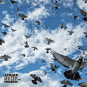 Pigeons And Planes de Donnie Boy