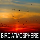 Bird Atmosphere by Bird Sounds