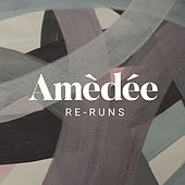Re-Runs de Wayne Amèdée