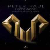 Home Alone (Broken Techno Autoremix) by Peter Paul