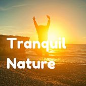 Tranquil Nature by Delaware Saints