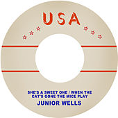 She's a Sweet One / When the Cat's Gone the Mice Play by Junior Wells