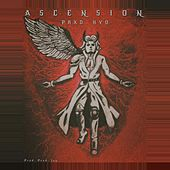 Ascension by kyo