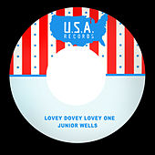 Lovey Dovey Lovey One by Junior Wells