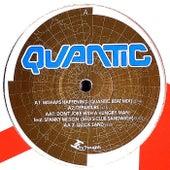 Mishaps Happening Remix EP by Quantic
