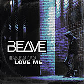 Used To Love Me by Beave