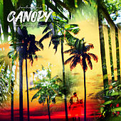 Canopy (Remix) by Jonathan Emile