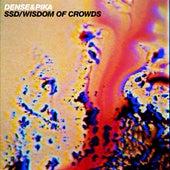 SSD / Wisdom of Crowds von Dense and Pika