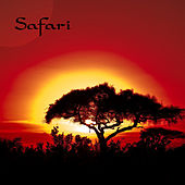 Safari di Various Artists
