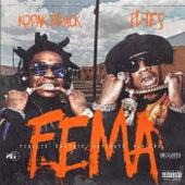 FEMA (Finesse Elevate Motivate Achieve) by Kodak Black