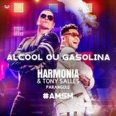 Álcool ou Gasolina de Harmonia Do Samba