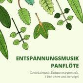 Entspannungsmusik Panflöte: Einschlafmusik, Entspannungsmusik, Flöte, Meer und die Vögel von Schlaflieder Relax